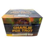 Charlie Fox Trot - 48 shot